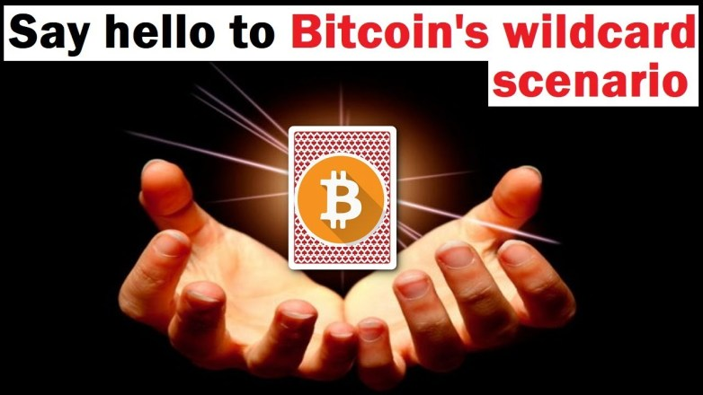 "Is Bitcoin's Bounce the Start of the ""Wildcard"" Scenario?"