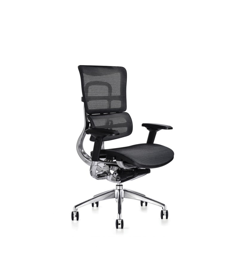 i29 ergonomic chair with mesh seat