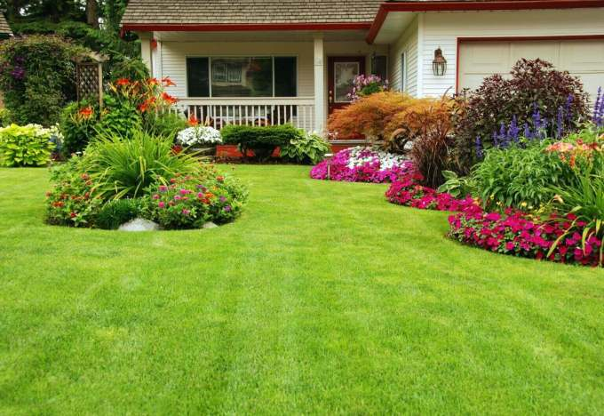 Backyard Landscaping Ideas - Mountains of Plants - harpmagazine.com