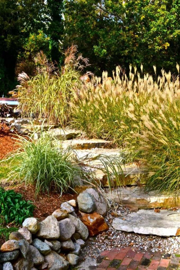 Backyard Landscaping Ideas - Plant Climate-Specific Grass - harpmagazine.com