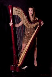 Wedding and Event Harpist, Nichole Rohrbach McKenzie of Harp and Soul