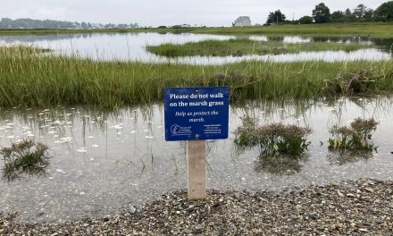 HHLT seeks to balance access with protection at Stover's Point