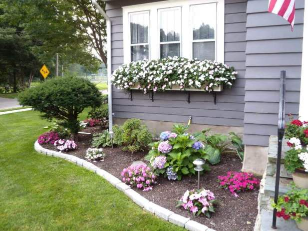 Front Yard Landscaping Ideas - Redeem the Plain Windows - Harptimes.com