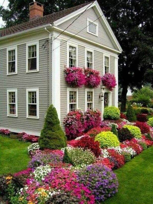 Front Yard Landscaping Ideas - Establish the Orders of Colorful Plants - Harptimes.com