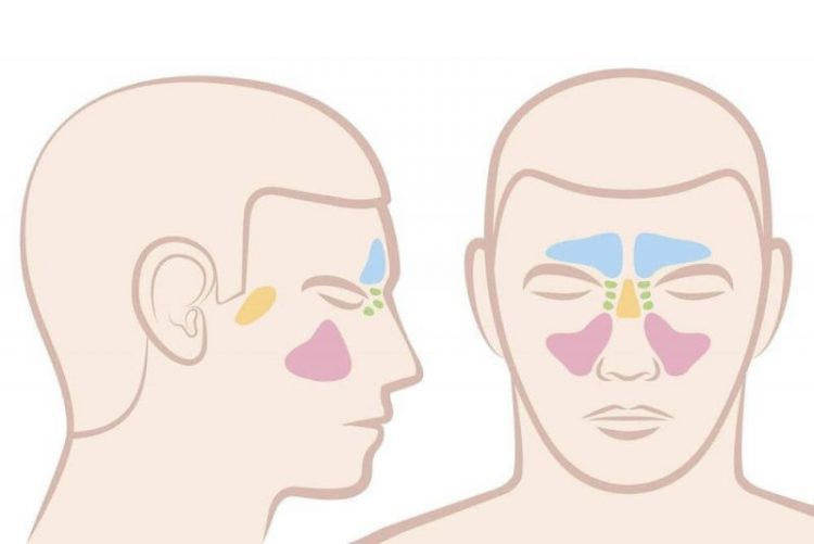 sinus infection contagious period