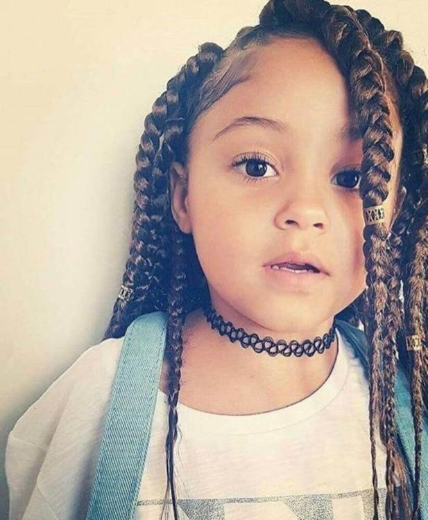 Little Black Girl Hairstyles with Braids