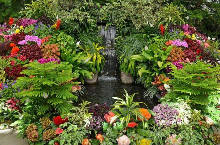 Final Words to Get Gardening Ideas for Small Yards - Harptimes.com