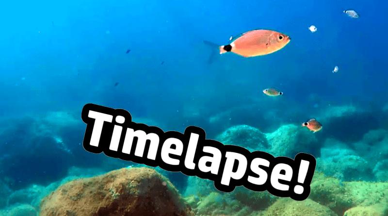 Unterwasser Zeitraffer mit der GoPro Kamera filmen underwater timelapse time lapse Dubrovnik Heider Bergsee