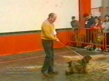 Sopuerta 1998. Canino - 006