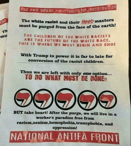 Image result for Antifa Manual