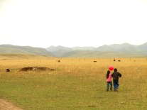 sangke grassland