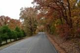 Fall-scene-3
