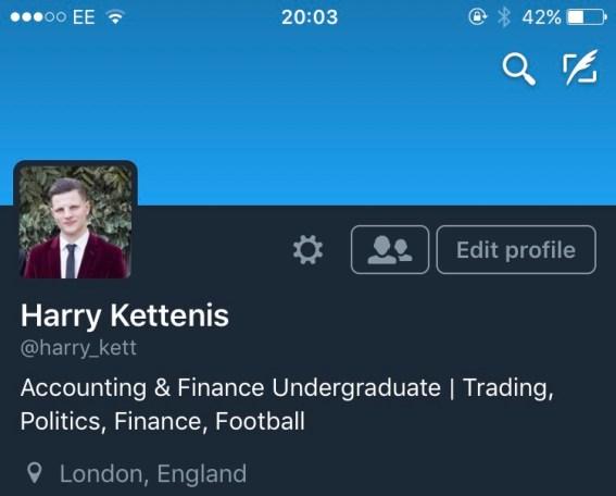 My Professional Twitter Profile