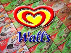 Dunia es krim Wall's