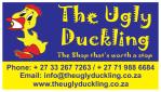 The Ugly Duckling – Chameleon village