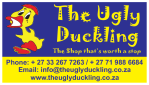 The Ugly Duckling – Chameleon Village