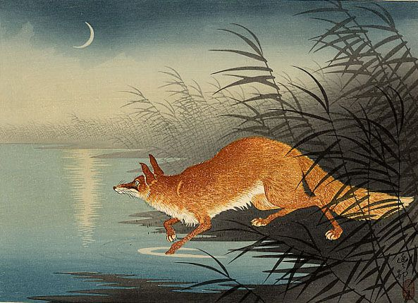 Ohara Koson's fox in the reeds