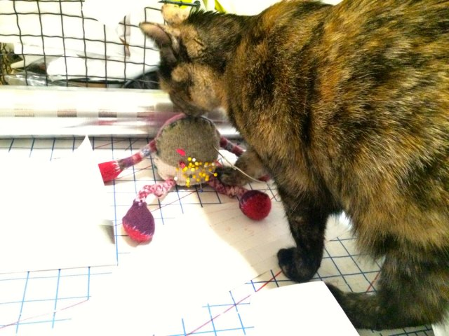 Crafty Cat and a pincushion