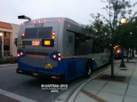 The rear of #1103 on the Route 80X.