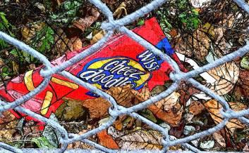 2014 Photo Challenge, Week 47: Nature & Wildlife - Litter & Trash
