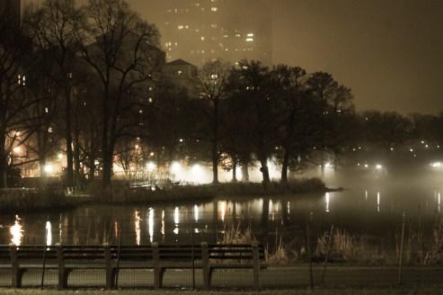 Foggy mist on Harlem Meer, Christmas Eve, 2014
