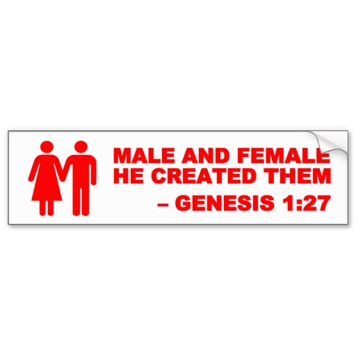 red sign male_and_female_gen_1_27_bumper_sticker_red-r3f2e2d2c59f941bba2986fd632b25d76_v9wht_8byvr_512