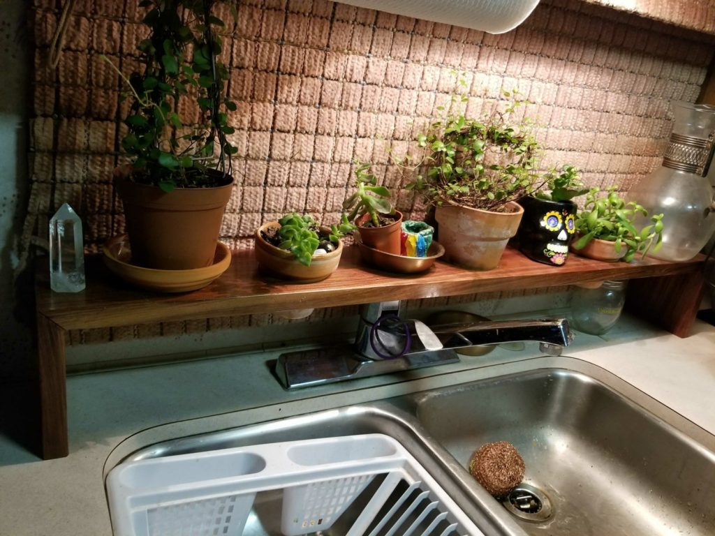 caring for plants in an rv unique rv