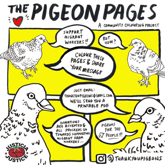 Pigeons4ThePeople