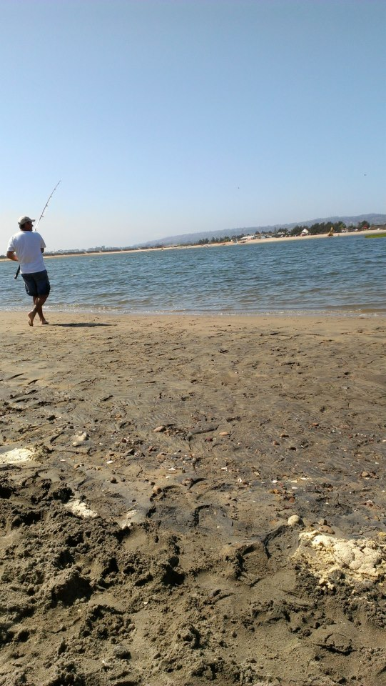 mission bay fishing harvesting nature