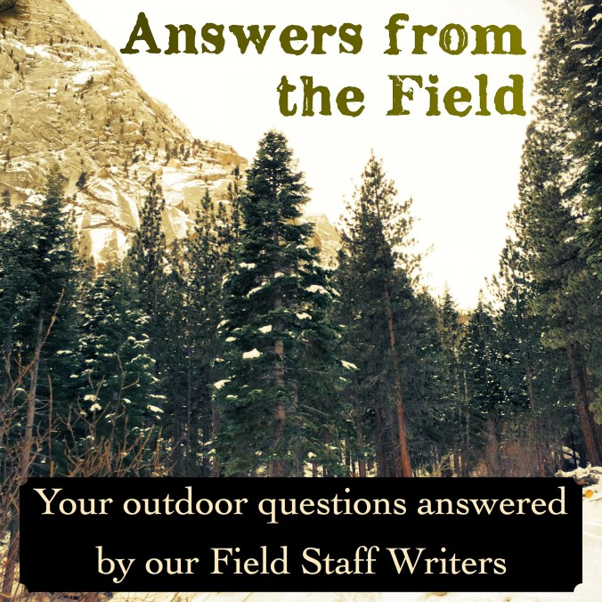 Answers From the Field