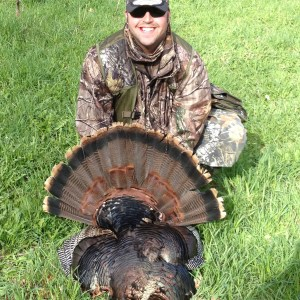 The Merriam's Turkey