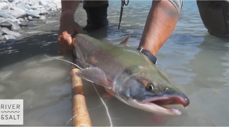 Fishing BC