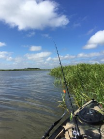 Fishing in South Georgia