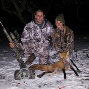 Anthony Campanella was hunting with Suzie Mountain, on January 7, when they took a big red fox in northwestern Pennsylvania. The pair used a red spot light to spot the fox coming in toward fox sounds on his FoxPro Predator Call