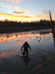 Sunrise while duck hunting