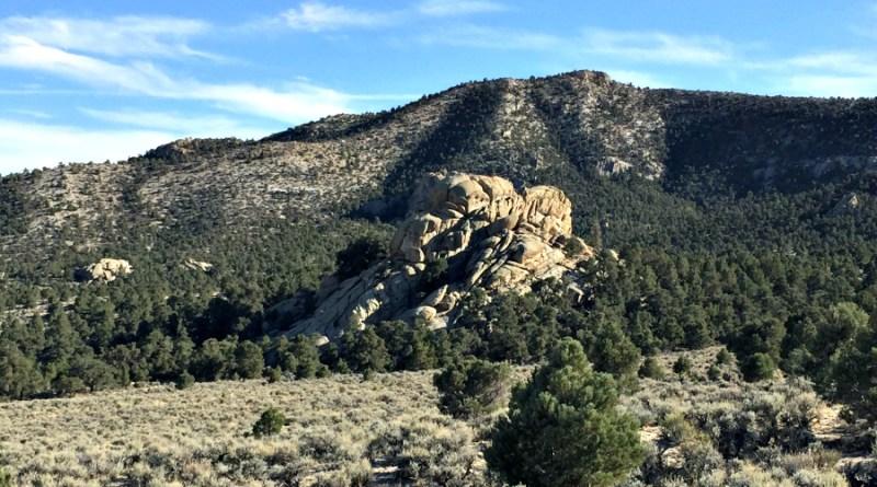 Nevada Elk Hunting