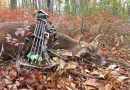 Over in an Instant:  Archery Season in the Pennsylvania Mountains