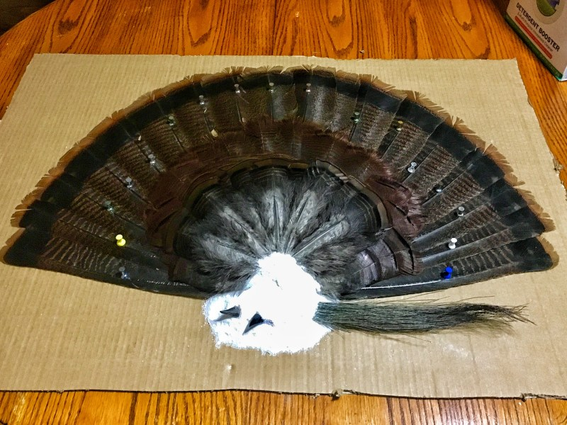 Mounting Turkey Fan