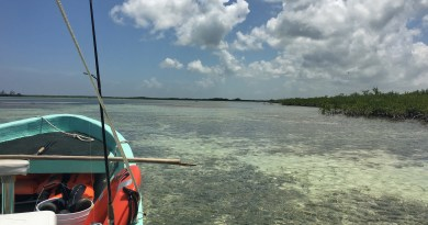 Ghost of the Flats: Fly Fishing for Bonefish in Cozumel