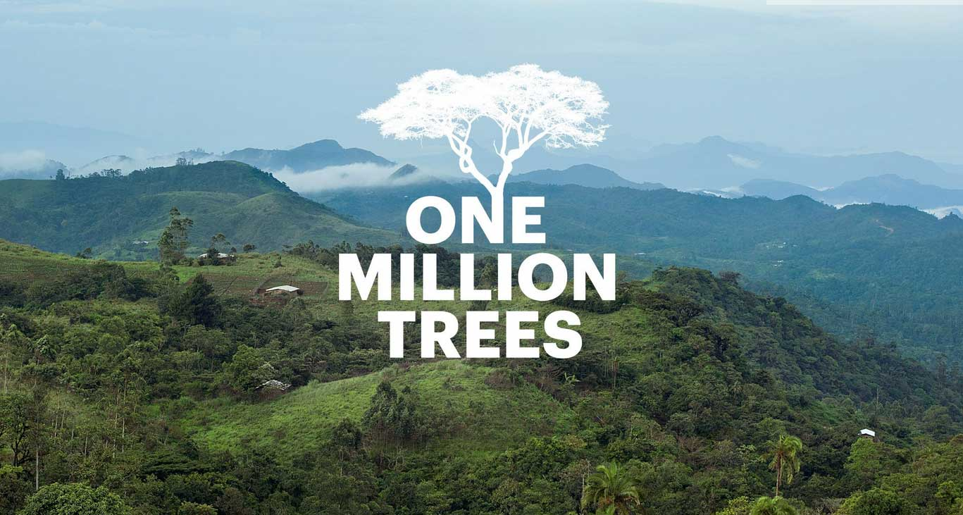 one-million-trees