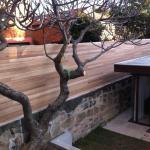 Harwood Menuisier palissade bois