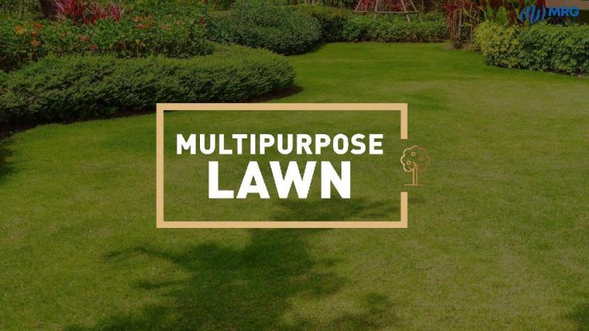 Multi Purpose Lawn