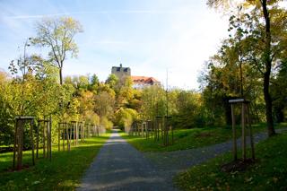 Bild: Blick über den Schlossteich auf das Schloss Ballenstedt.