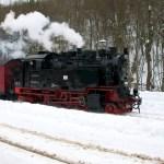Bild: Winter 2010/2011 - Dampflok der HARZER SCHMALSPURBAHN in Alexisbad.