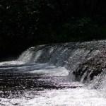 Bild: Wehr des Flusses Bode bei Neinstedt unterhalb der Teufelsmauer.