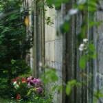 Bild: Gruftanlage auf dem Servati-Friedhof zu Quedlinburg.