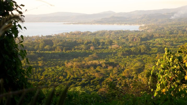 Beautiful view of the plantations heading out of San Blas.