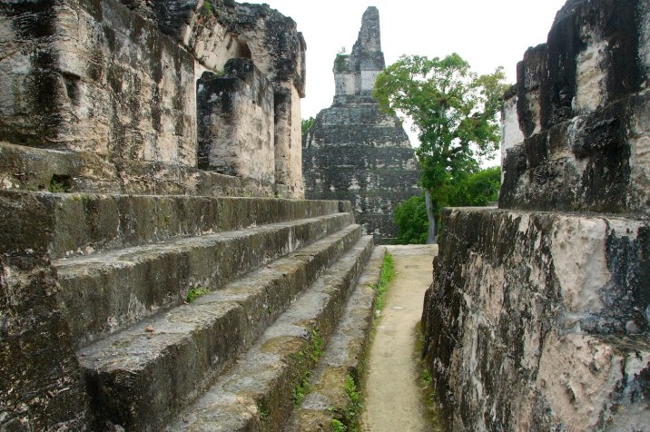 The urban planning of the Maya is sometimes unexplainable -- steps to nowhere is the running theme.