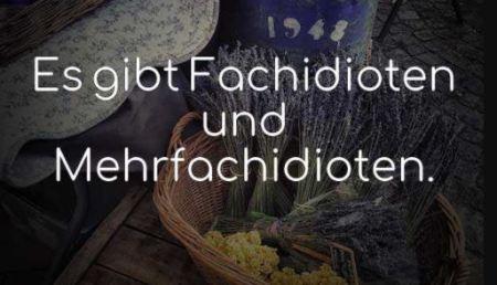 Fachidiot