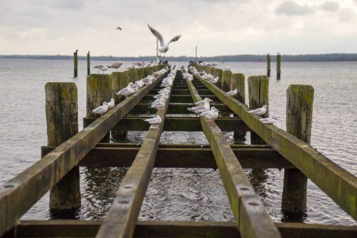 Travemünde Ostsee Brücke